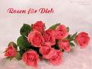 Rosen für Dich ...
