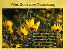 Alles Gute zum Geburtstag (Sonnenschein, Freiheit und eine kleine Blume ...)