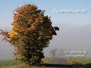 Novemberwunsch: Ich wünsche Dir Geborgenheit