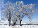 Februarwunsch: Genieße die Farben des Winters