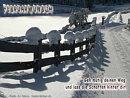 Februarwunsch: Geh mutig deinen Weg und lass die Schatten hinter dir