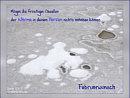 Februarwunsch: Mögen die frostigen Gesellen der Wärme in deinem Herzen nichts anhaben können