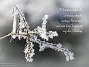 Februarwunsch: Ich wünsche dir sonnige Wintertage und eine leise Vorfreude auf den Frühling