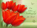 Ein lieber Frühlingsgruß für Dich