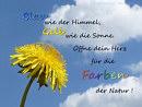 Blau wie der Himmel, gelb wie die Sonne ... öffne dein Herz für die Farben der Natur