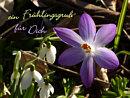 ein Frühlingsgruß für Dich