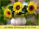 ein lieber Sommergruß für Dich