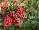 einen schönen Herbst für dich
